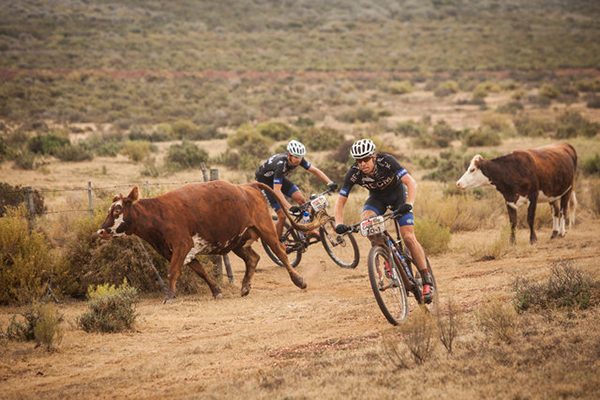 La Absa Cape Epic 2014