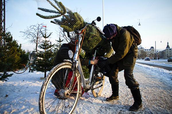 Albero di Natale montato su una bici