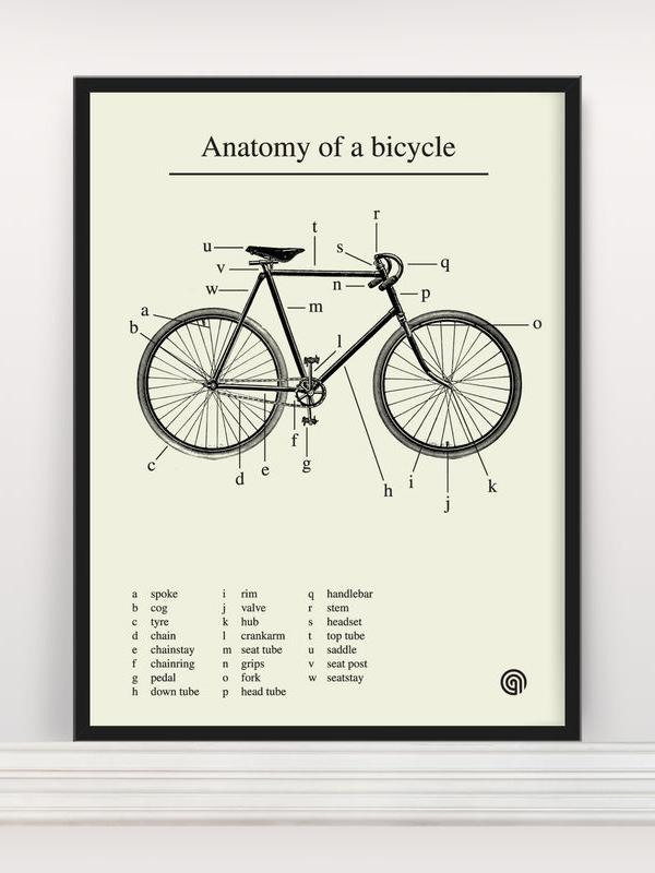 Anatomia di una bici