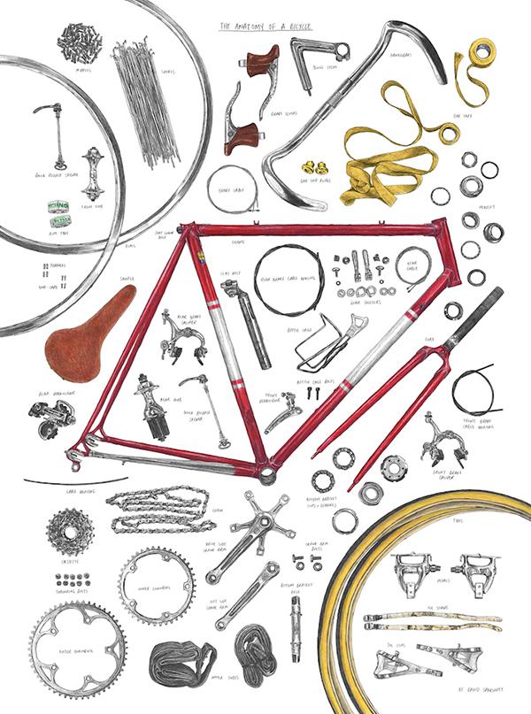 Anatomia di una bicicletta di David Sparshott