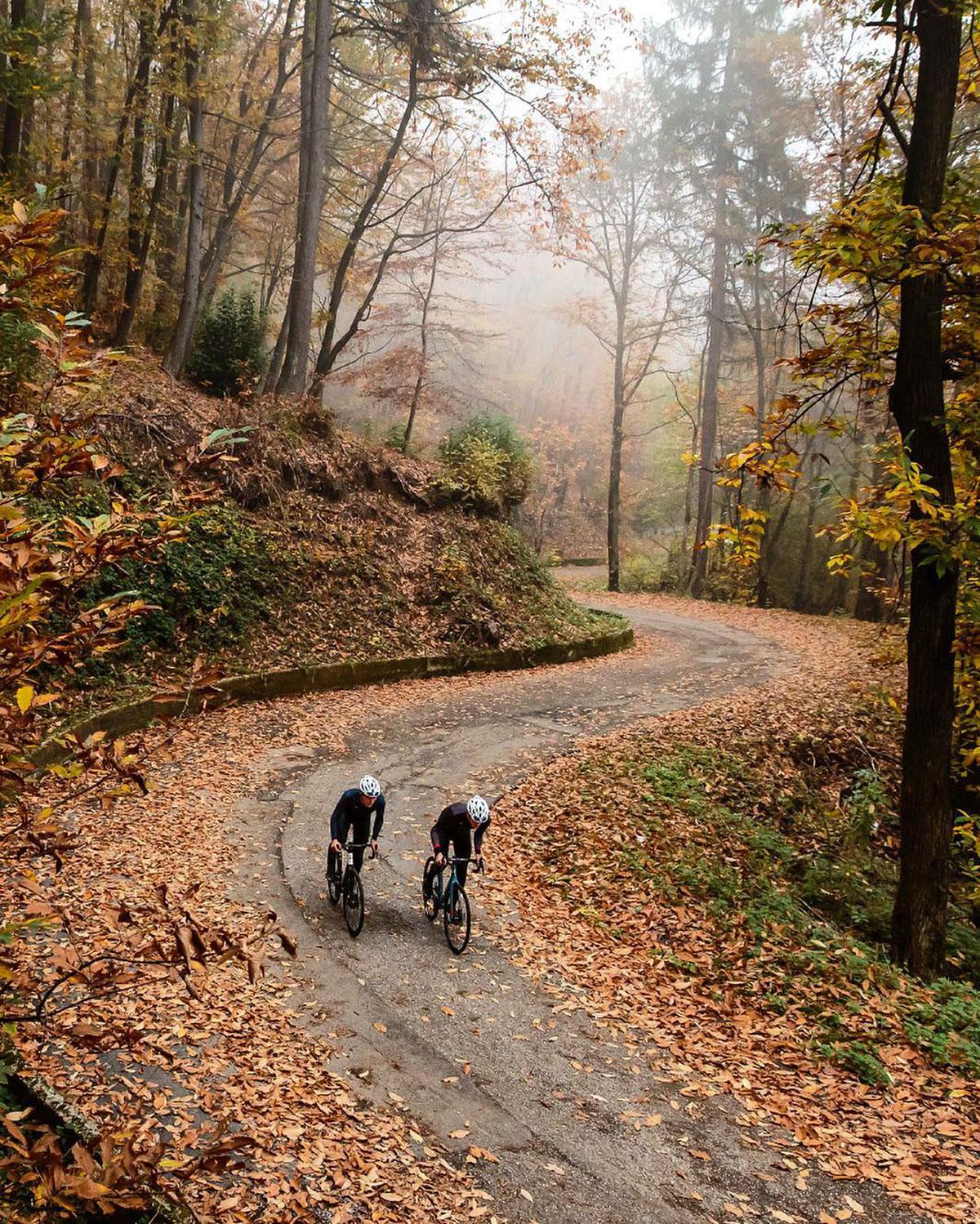Due ciclisti in un boso in autunno