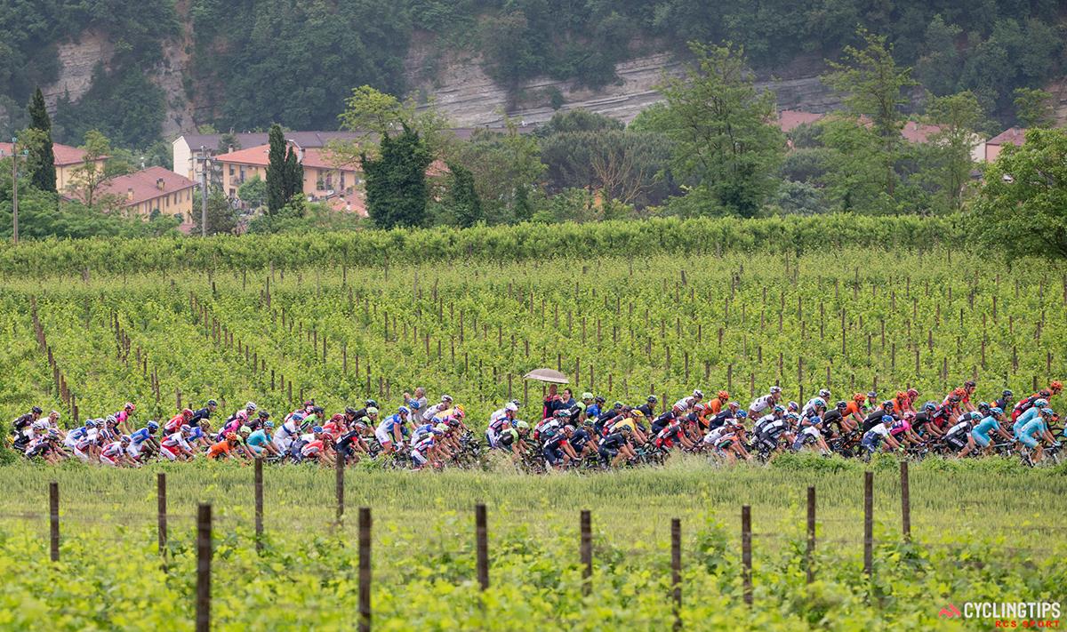 Il Giro d'Italia 2015 tra i vigneti