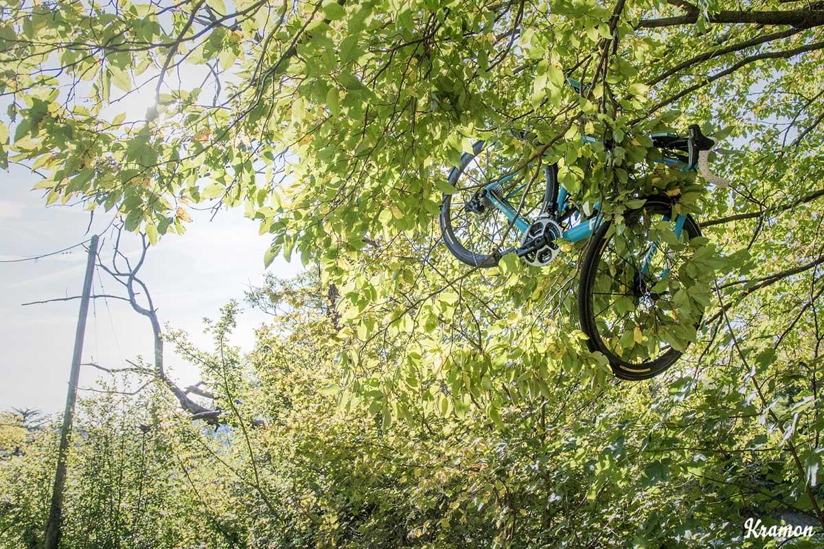 Una bicicletta sull'albero dopo una caduta a Il Lombardia 2017