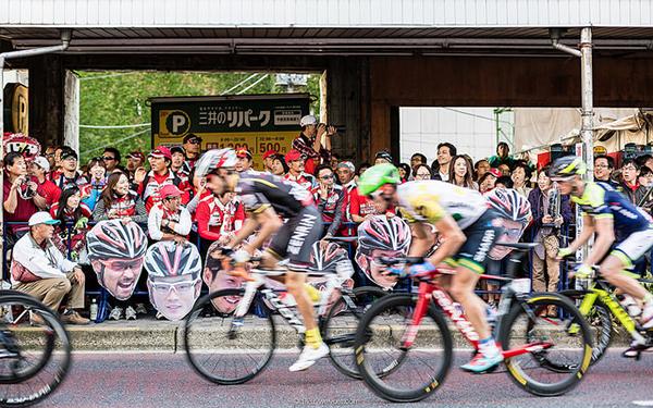 Japan Cup 2014
