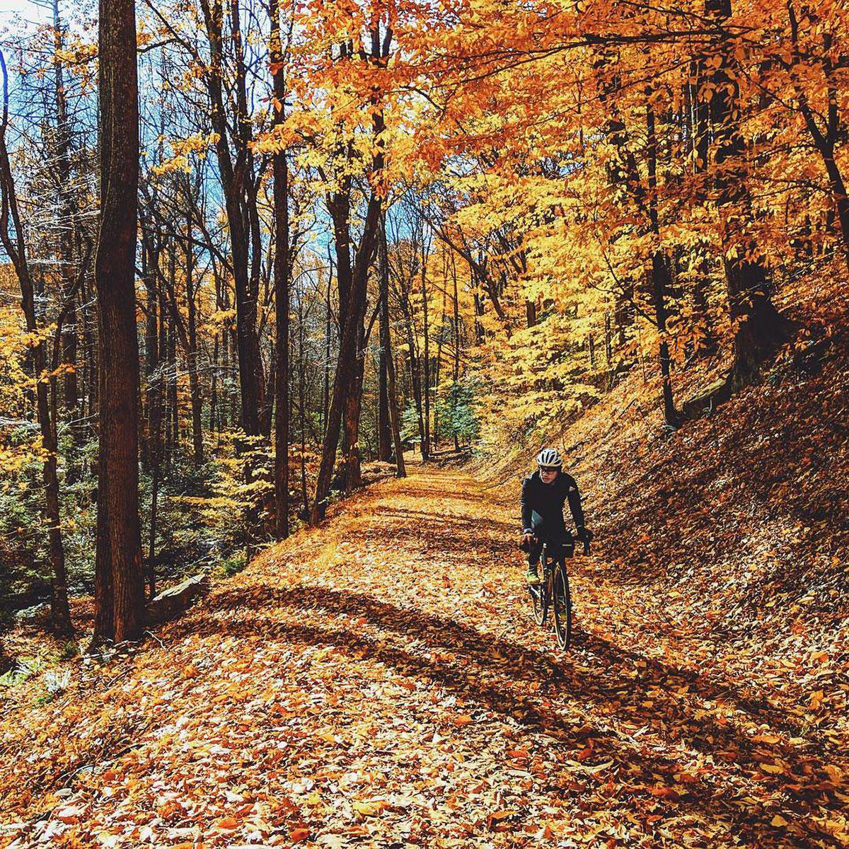 Ciclista tra il foliage autunnale