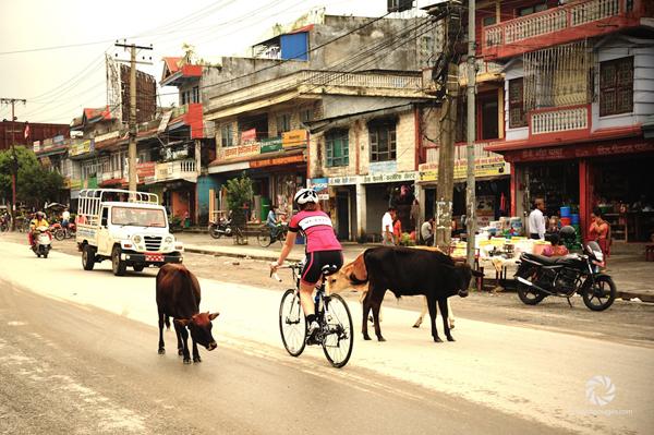 Tess pedala a Pokhara in Nepal