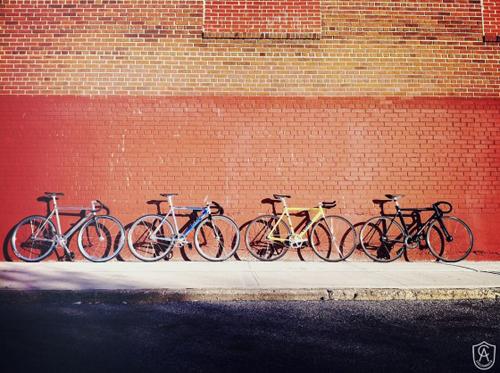 Quattro bici a scatto fisso davanti a un muro