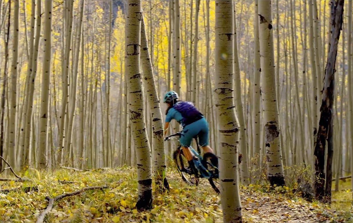 Pittura e mountain bike nella stagione delle foglie morte