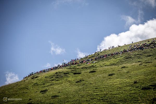 Pubblico del Tour 2014 sulle Alpi