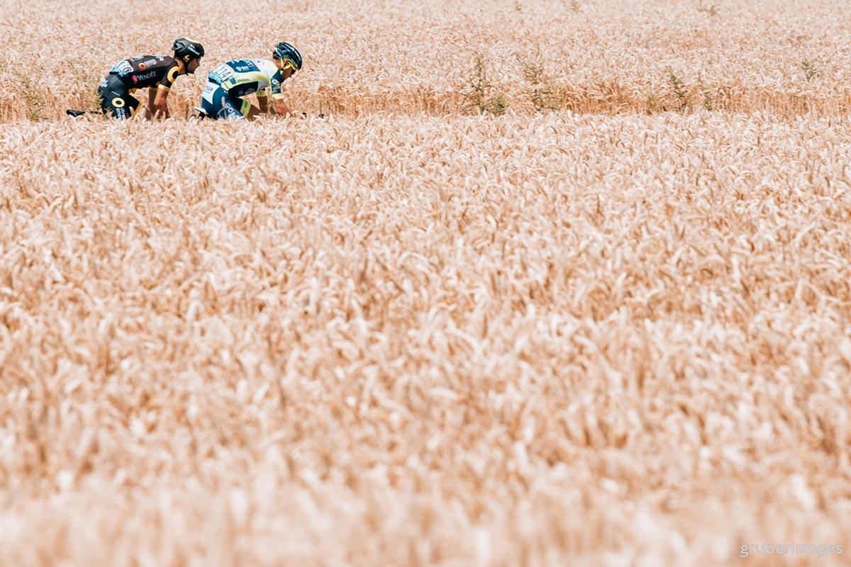 Il Tour 2018 in un mare di grano